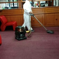 Carpet deep bacteria cleansing - mobile team