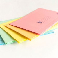 Assorted Colour Lion File brand Pocket File