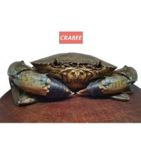 Crabee's Live crabs (400-500g) unpicked (20kg) (1 Units Per Carton)