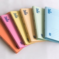 Assorted Colours Lion File Premium (400gsm) Manila Files with Plastic Flats. (100 Units Per Carton)